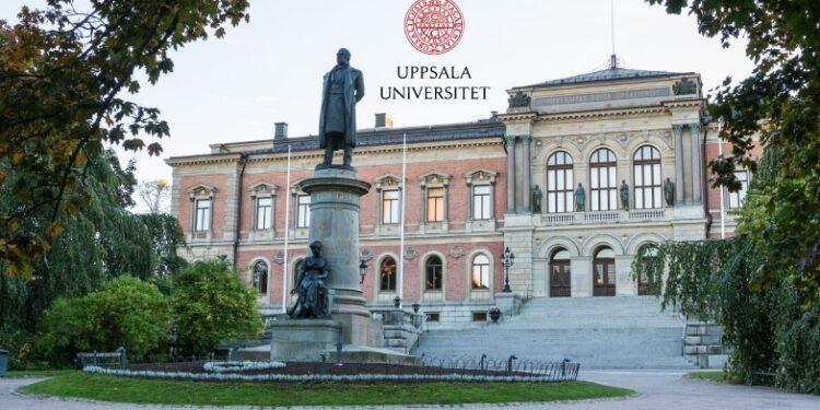 The Barbro Klein Fellowship Programme in Sweden 2022 - 2023